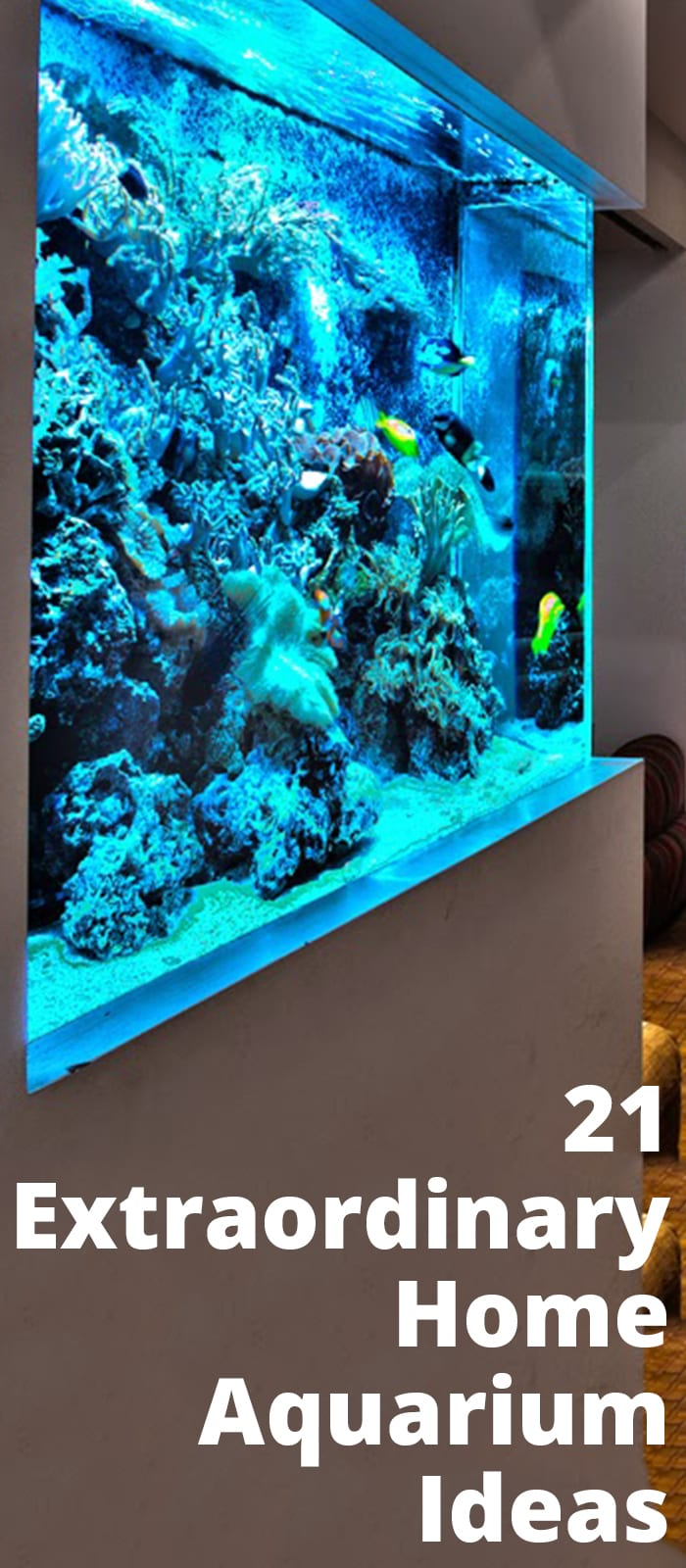 Extraordinary Home Aquarium Ideas