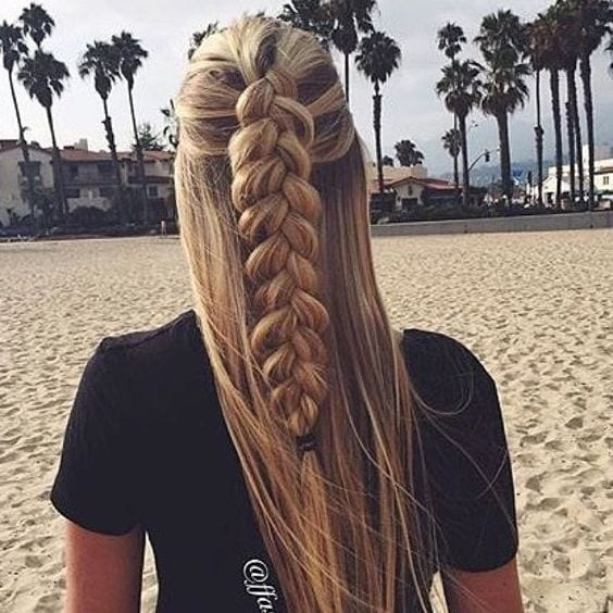 dutch braid half