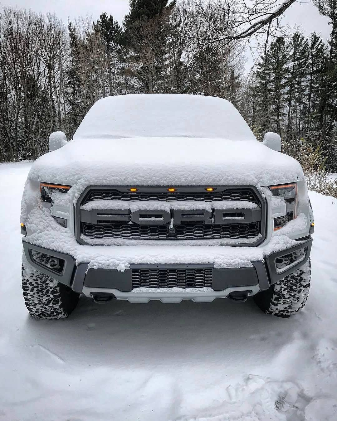 FORD F150 WHITE SNOW