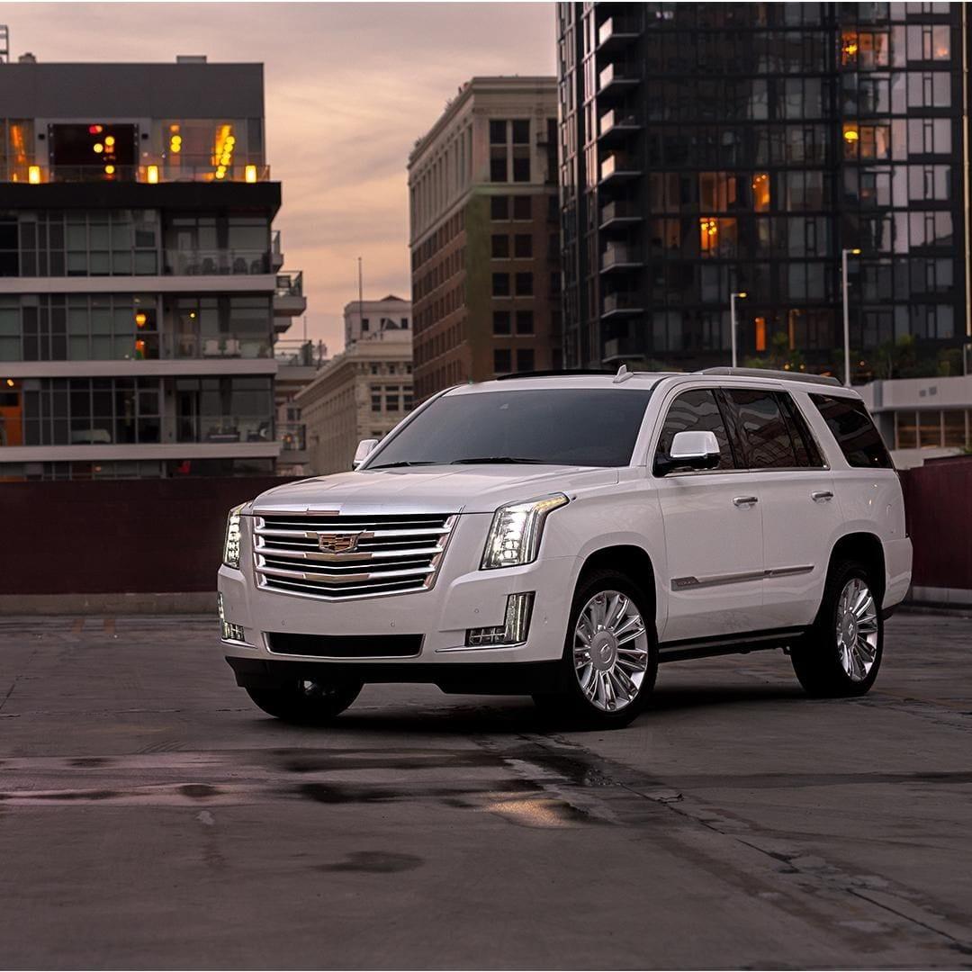 15 Cadillac Suv Everyone Should Have A Look At