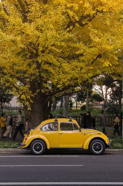 YELLOW CLASSIC BEETLE CAR