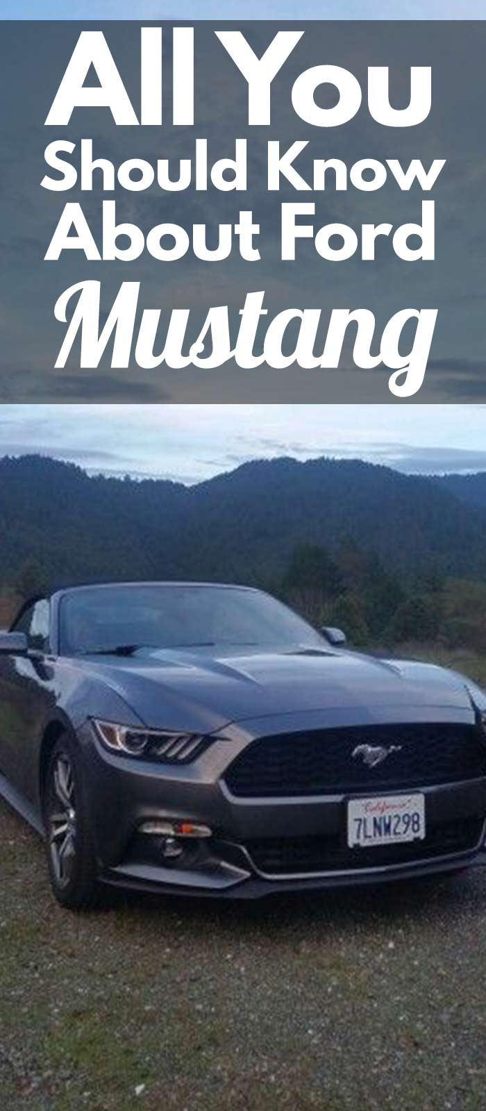 All You Should Know About Ford MUSTANG!
