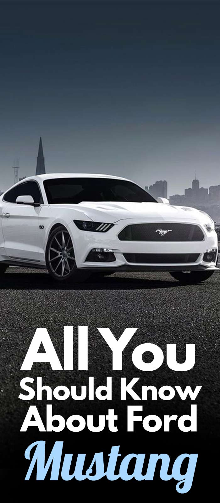All You Should Know About MUSTANG.
