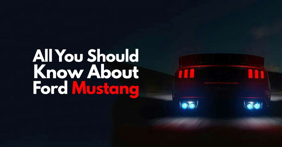 All You Should Know About MUSTANG!