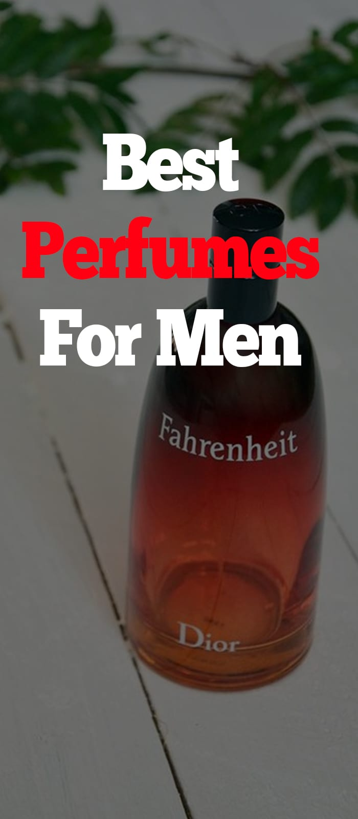 Dior Fahrenheit EDT Perfumes for Men to try