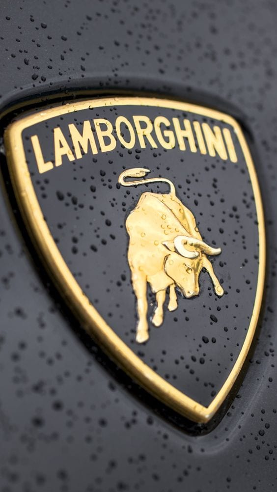 LAMBORGHINI GOLDEN LOGO