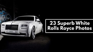 Superb White Rolls Royce Photos!