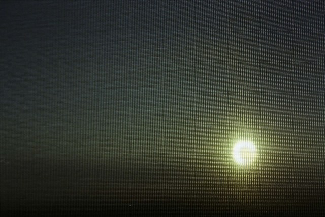 Sunset through Getty