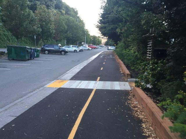 Small pedestrian path passing through a landscaped area and across the cycletrack.