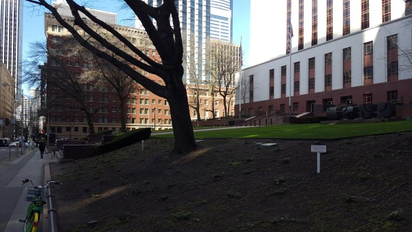 A lawn in front of Nakamura Courthouse appears to go unused. (Photo by author)