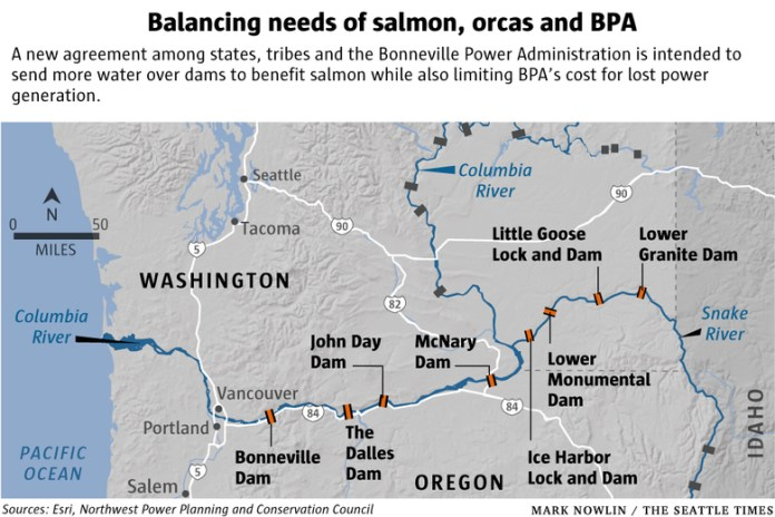 The Snake River is a tributary of the Columbia River. The state is considering removing the four Lower Snake dams. (Credit: Mark Nowlin / The Seattle Times)