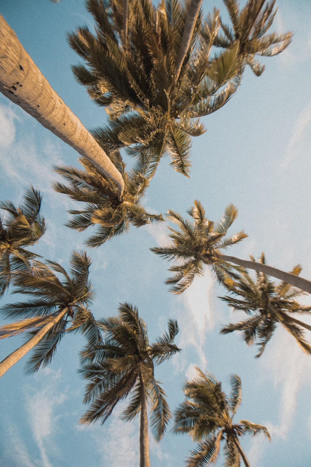 10-Best-Summer-Beauty-tips