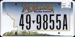 Image of the Montana state license.
