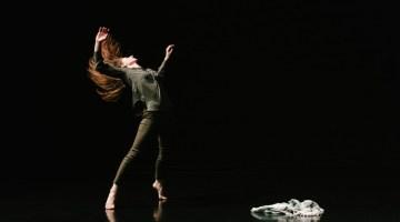Dan Higgins' In. Memory. Of. focuses on stigma of mental illness, as part of Repertory Dance Theatre's Link Series