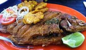 fishlaboca