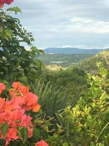 Panorma Villa, Sosua, Flower