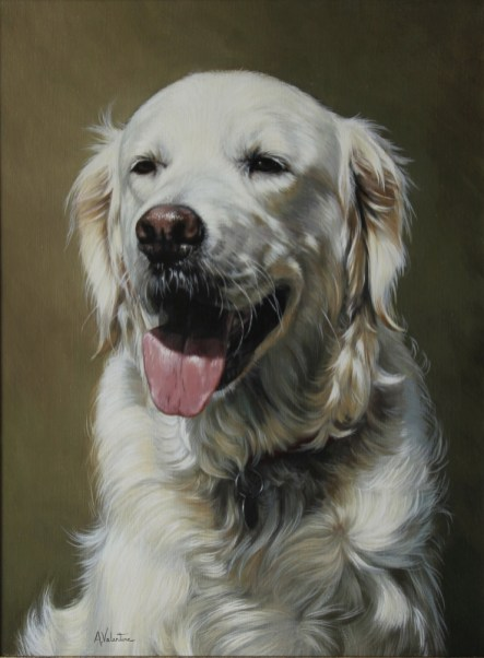 Pet portrait in Oils of a Woofability dog by Annabelle Valentine
