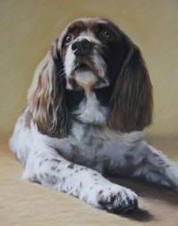 dog pastel 2