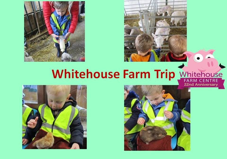 Whitehouse Farm Trip