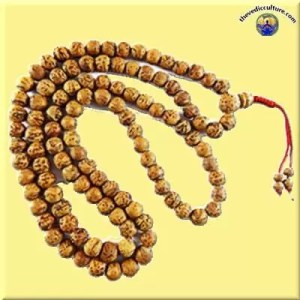 Bodhi seed mala