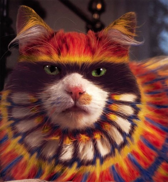 Top 10 Strange and Unusual Painted Cats