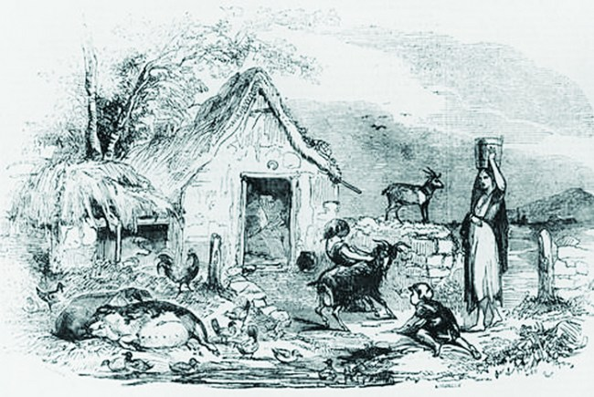 Peasant cottage