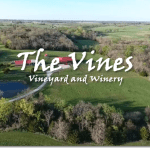 The Vines Vineyard and Winery