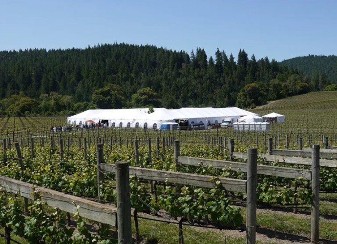 Anderson Valley Pinot Noir Festival