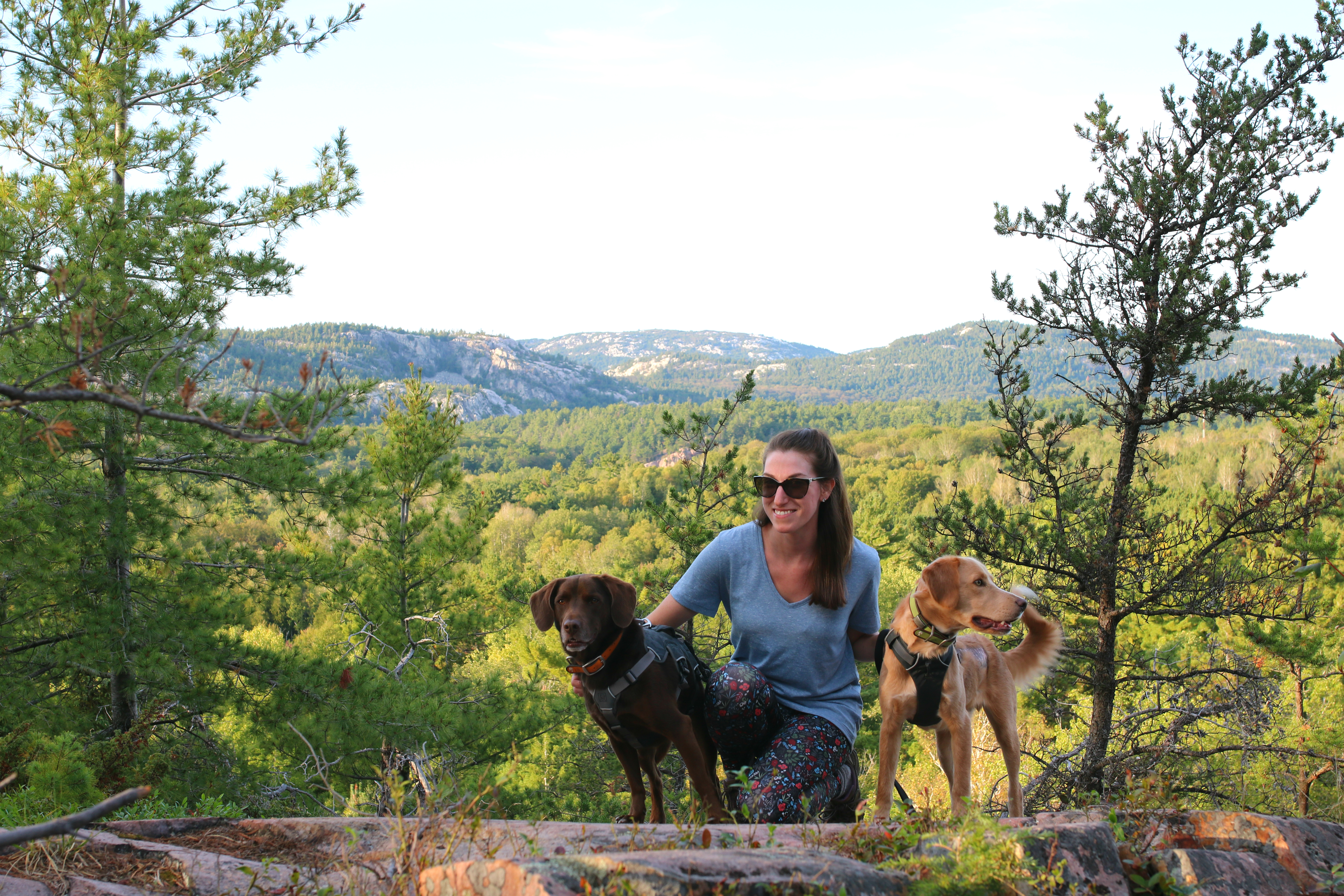 Hiking Killarney Provincial Park with Dogs – The Vintage