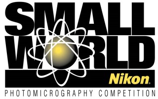 Nikon small world competition 2021 (Contest) – Details