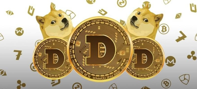 This Mysterious Whale Account Has 28% Major Hold Of Dogecoin (Doge), This Can Be Risk For Retail Investors !