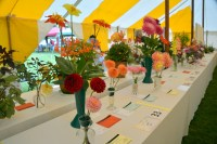 Iwerne Minster Flower Show