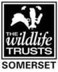 Somerset wildlife