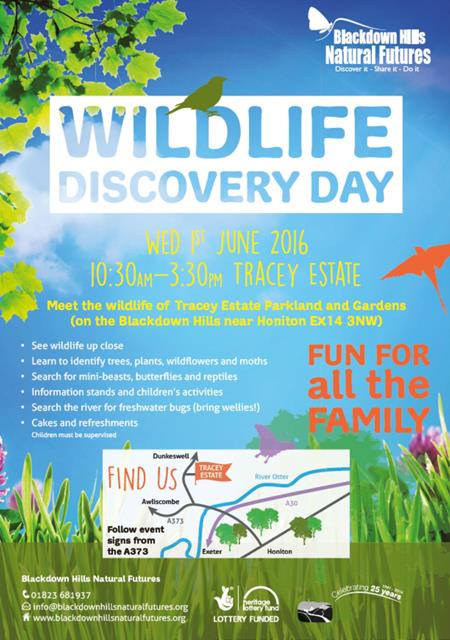 Discovery Day Flyer
