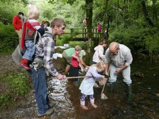 River invertebrate sampling