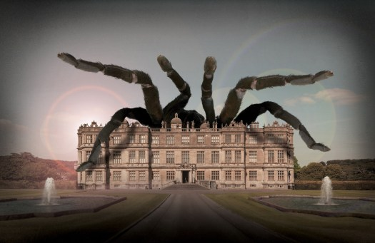 Marvellous Monsters at Longleat tarantula (1800x1170)