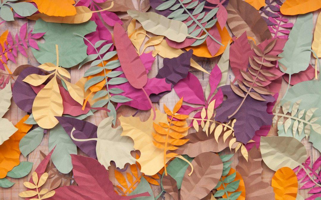 Little Ray of Sunflower: El arte de trabajar con papel