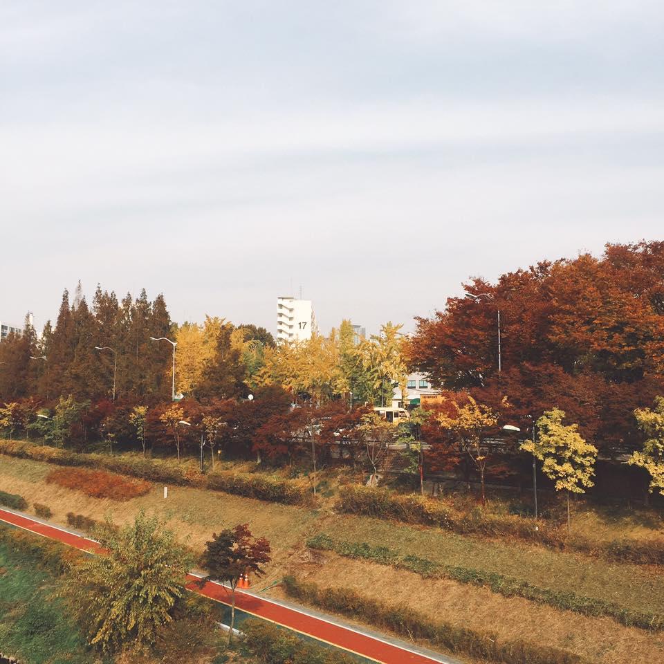 trip-ke-lokasi-k-drama-korea-13