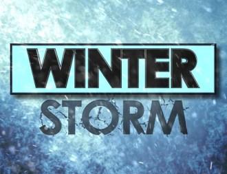 Winter storm artwork 1-2014