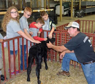 Fourth-graders from Van Wert Elementary School had the chance to pet a calf and learn about livestock production from local farmer Mike Schumm. (Dave Mosier/Van Wert independent)