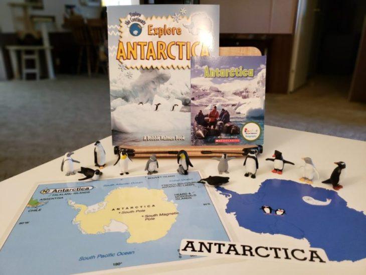 Continent Boxes Antarctica