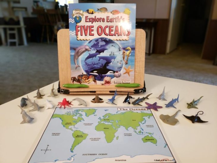 Continent Boxes The Five Oceans