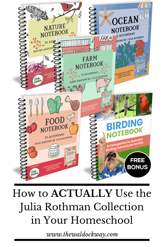The Julia Rothman Collection is gorgeous and part of every homeschoolers library. But, what do you actually do with them after you've bought them? Let me show you a better way to utilize them in your homeschool today!