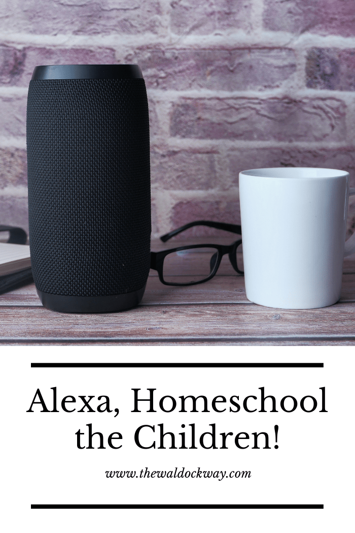 Do you use Alexa for school? If you have an Amazon Alexa, your kids may have already discovered a few fun skills they love like playing hide and seek or listening to their favorite songs. But Alexa is more than a music player or novelty, it's an exciting new way to learn at home.