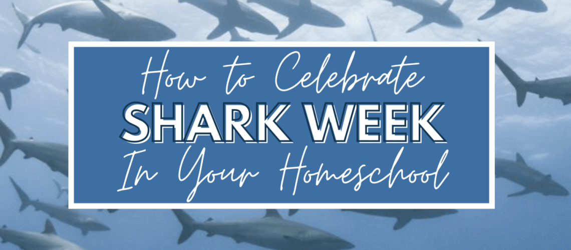 """Shark Week on Discovery Channel, an annual celebration of all things """"shark,"""" routinely takes over television during July. It's the longest running program in history filled with information about the secret lives of these ocean predators. Shark Week's main purpose is to focus on conservation efforts and correcting many of the common misconceptions about sharks. Use the opportunity to celebrate in your homeschool with these awesome resources."""