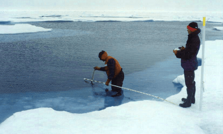 Rapid Changes in the Environment and the Future of Canada's North