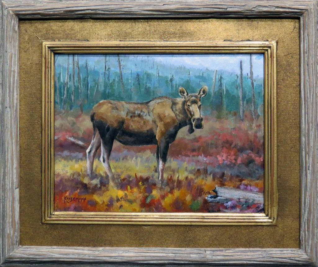 Moose 300 res  IMG_0311