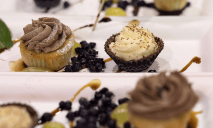 The Finest Culinary Offerings in NWO — Savour Superior Returns