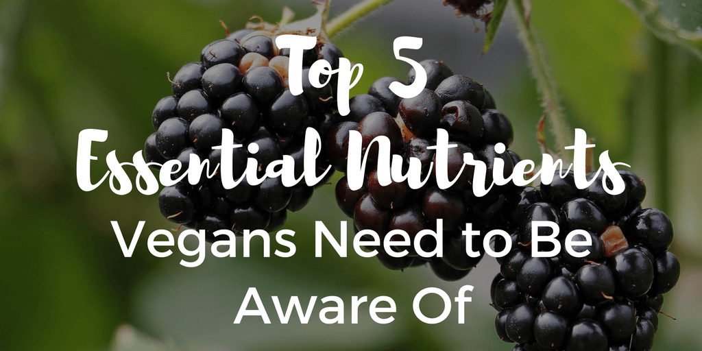 Top 5 Essential Nutrients Vegans Need to Be Aware Of | The Wanderful Me