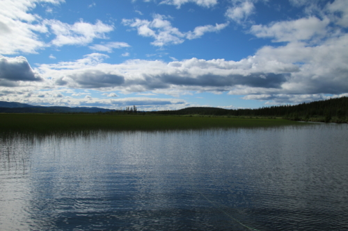 The Wandering Angler - Yukon Lodge0012 (3)